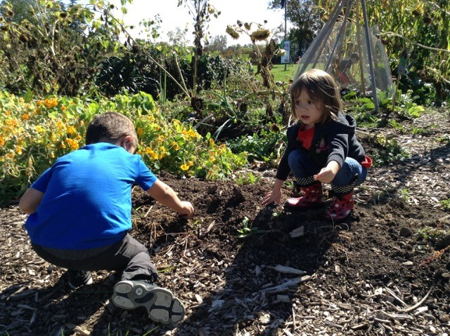children planting in a garden